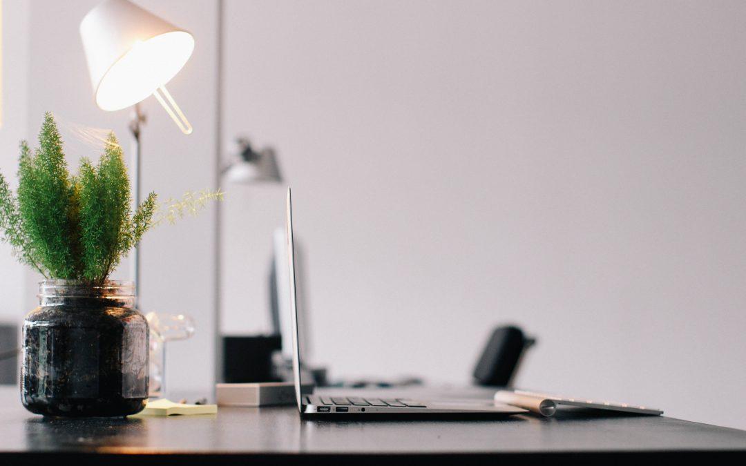Créer un bureau vert et naturel avec ces 5 éléments essentiels